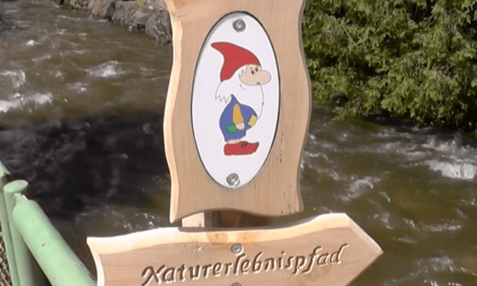"Natur-Erlebnispfad ""Hademar Waldwichtel"" Oberharmersbach"