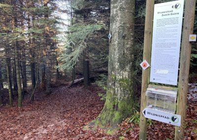 Wildnispfad Seebach