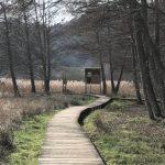 Naturlehrpfad Litschental Seelbach